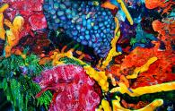 "70 Feet Below | 30"" x 48"" Acrylic on Canvas ~ SOLD"